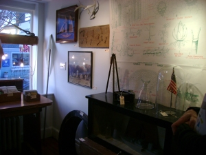 A large vintage photo print of elephants, taken on safari, and other manly-themed elements on the gallery wall.