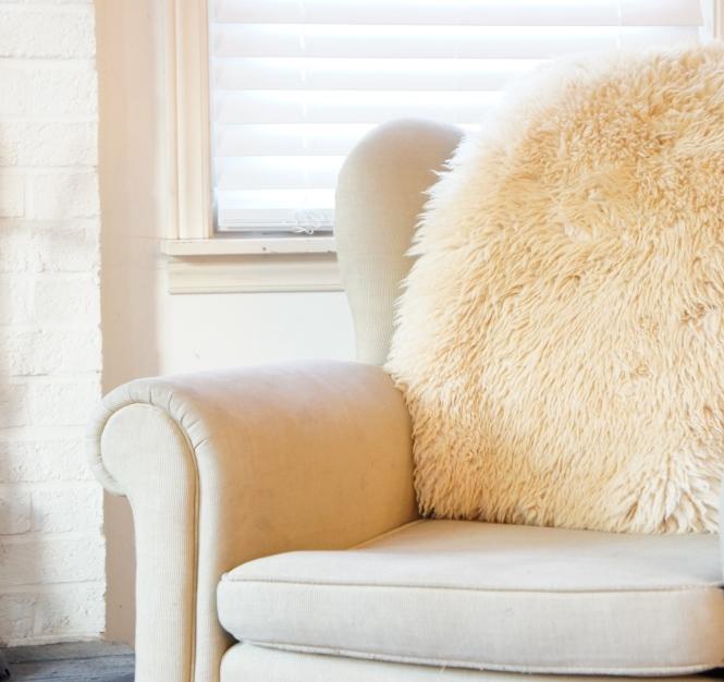 Chair & Skin