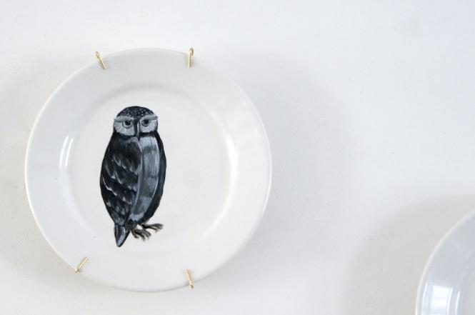 Mr. Owl says No!