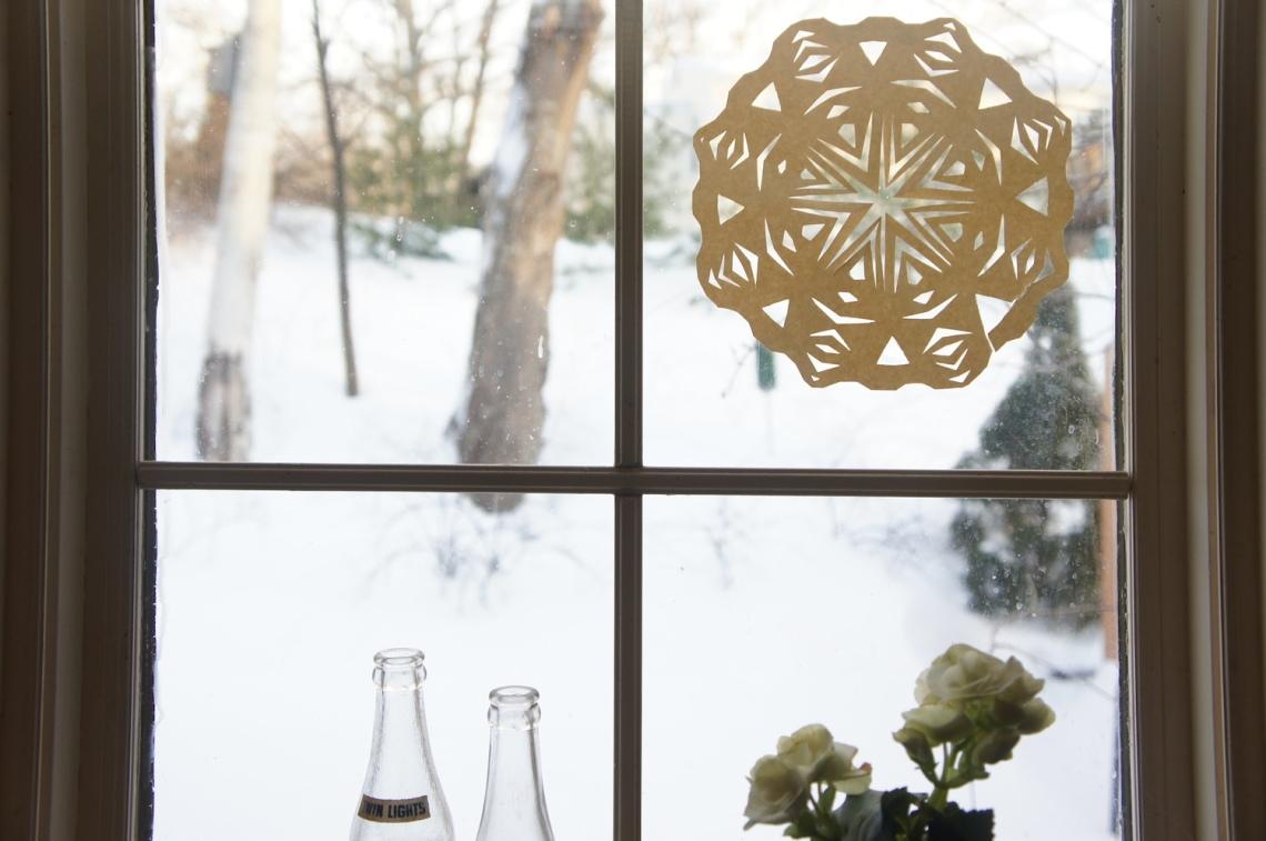 Snowflake & Snowflakes